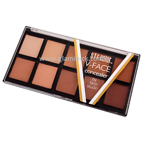 SFR Color V Face Concealer Pallet 02